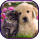 Cute Cat & Dog Live Wallpapers by Widgets For You