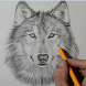 Wolf Drawing by NSMobileApp