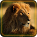 Lions African live wallpaper by Free LWP group
