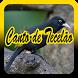 Canto de Tecelão by ayuki apps
