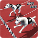 Crazy Greyhound Dog Racing by Engaging Games Studio
