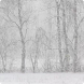 Gentle Snowfall Live Wallpaper by Andu Dun
