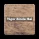 Movie Video For Tiger Zinda Hai by Arshad Shaikh