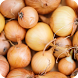 beneficios del cebolla by itaQppa