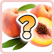 Угадай фрукты by MackMedia
