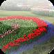Flower Garden Design Ideas by BeeIdeas