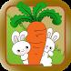 蘿蔔家園保衛戰