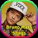 Bruno Mars Songs by Nimble Rain Company