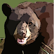 Bear - Sound Effects by APH International