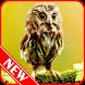 Owl Wallpaper by Nofia Frisca 346