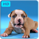 Puppies Live Video Wallpaper by JimmyTummy