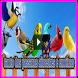 25 canto dos passaros silvestres e exoticos