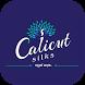 Calicut Silks