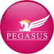 PEGASUS by Appswiz W.X