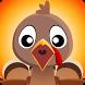 Turkey Roast by Triple Hit Combo