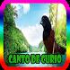 Canto Para esquentar curio by Rejeki 7 Turunan