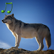 Animal sounds and photos by Cygnus Software