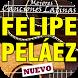 Felipe Peláez vivo pensando en ti letras canciones
