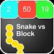 Pro Snake VS Block Guide