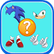 Guess the Sonic Characters by kplunas