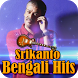 Srikanto Bengali Hits by Shemaroo Entertainment Ltd.