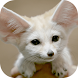 Baby Animal Wallpapers by AlexanderCrumyhn