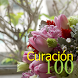 100 Curación by KenMac Holdings Limited