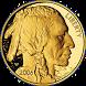 Coin Flip by dbrienen4