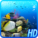 Coral Reef of Kerama HD Trial by DMF, Inc.