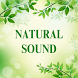 Nature Sound For Sleep by Janet Merklinger