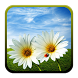 Nature HD Live Wallpaper by Rusted Robo Studios
