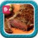 Easy CrockPot & Oven Recipes by Media App Recipes
