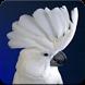 The White Cockatoo Sound: Umbrella Cockatoo Sounds by Nic and Chloe Studio