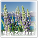 Visit New Zealand by bdl.apk3