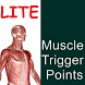 Muscle Trigger Points LITE by Vital Acts Inc.