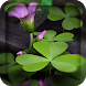 3D Flowers Live Wallpaper HD by DynamicArt Creator