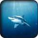 Shark Wallpapers by HAnna