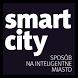 AMS dla miast by Smartzilla