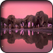 Elephant Wallpapers by HAnna