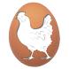 بورصة بيض وكتاكيت السيد خاطر by zaaan.com