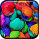 Color Shells Live Wallpaper by Marik Widget