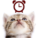 Cats Analog-Clocks Widget by peso.apps.pub.arts