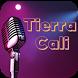 Tierra Cali Musica Fan by SunnyTech