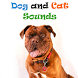 Funny Cats and Dogs Sounds by Inspired Art