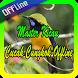 Master Kicau Cucak Cungkok Offline by ayuki apps
