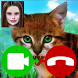 Cat Fake Video Call by TenAppsAndGames