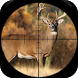 Whitetail Deer Hunting Calls by Ape X Apps 333