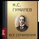 Гумилев Н.С. Pro