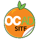 OC Ad Site by Wise I.T.
