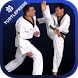 Taekwondo Skills and Drills by Vidapp